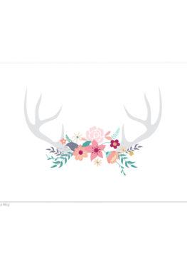Carte postale bois de cerf