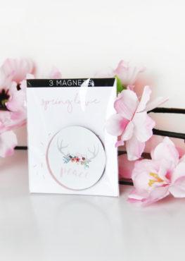 Magnet spring love