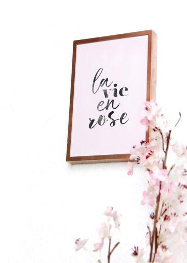 carte postale à message la vie en rose